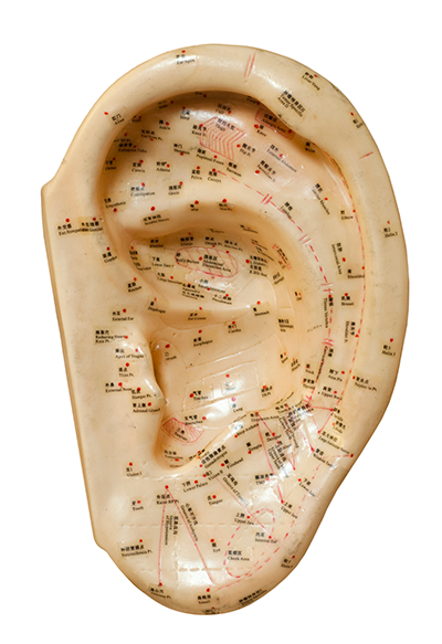 Akupunkturpunkter i øret